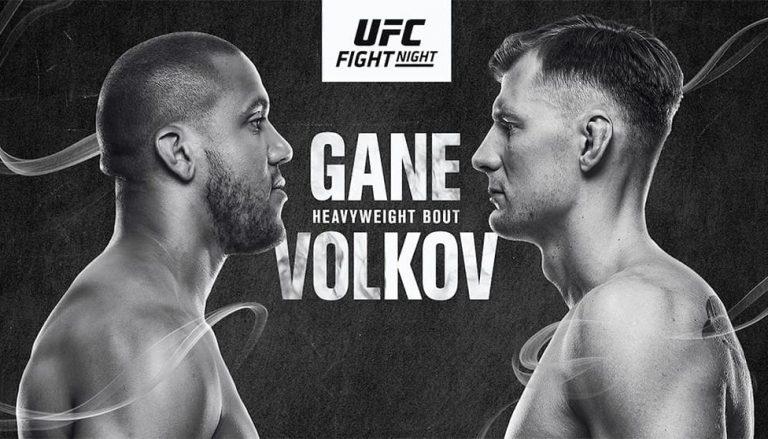 Выводы UFC 190